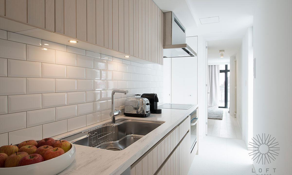 Loft Niseko 401 kitchen