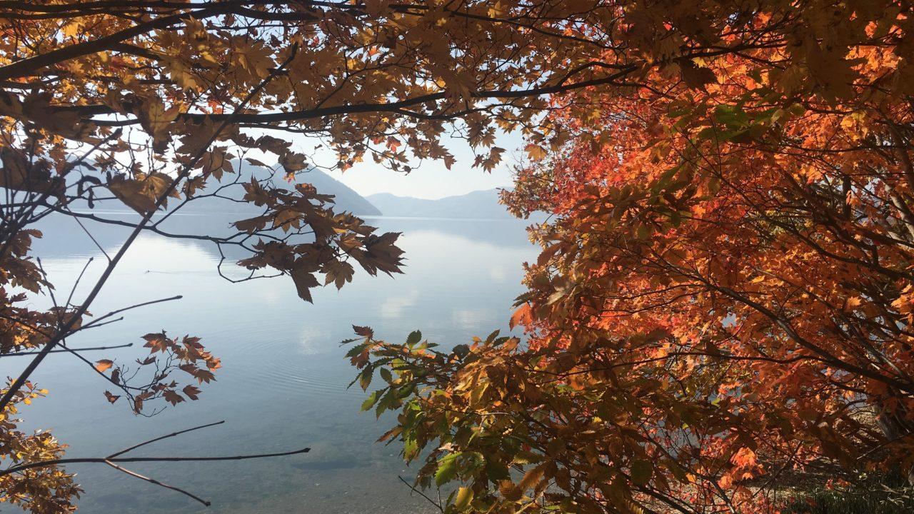 Niseko Realty Toya Ridge Land Trees & Lake