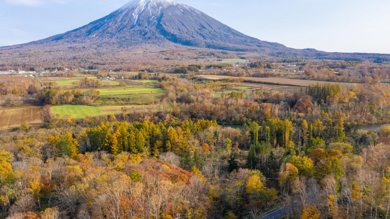 Niseko Property Land Chalet 5