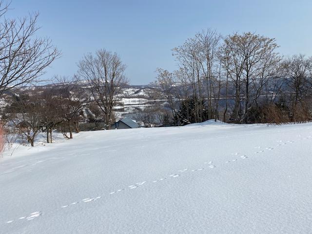 Niseko Realty Lake Toya Views 6